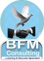 BFM Consulting